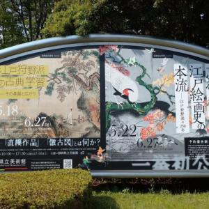 【忘れられた江戸絵画史の本流】静岡県立美術館にて狩野派の絵を楽しむ