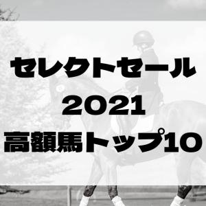 セレクトセール2021高額取引トップ10の紹介[競馬]