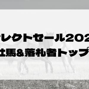 セレクトセール2021種牡馬・馬主別の合計落札額トップ10