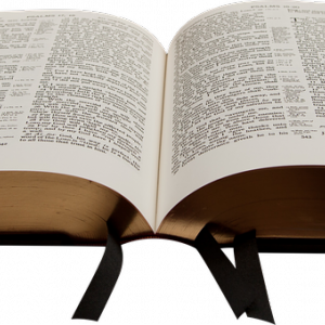 聖書:信じる根拠