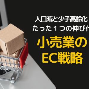日本のEC化率急上昇 スーパーマーケット、ドラッグストア、コンビニのEC戦略を一気まとめ