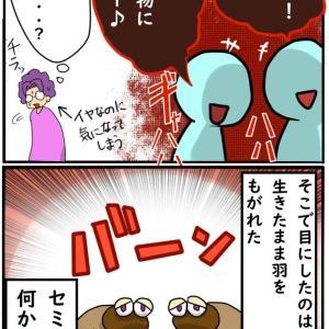 【蝉】小学生の悪魔のアソビ【胸糞注意】
