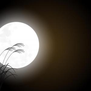 中秋の名月 Moon Festival 十五夜のお月見