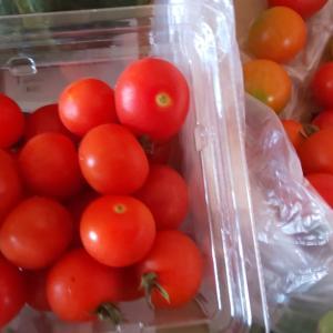 7月21日に届いた野菜便。