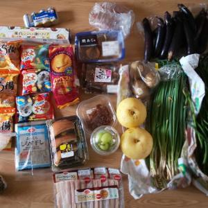 9月17日に届いた野菜。