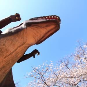 桜と恐竜と博物館
