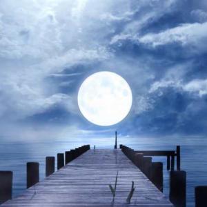 月光(不定期リアップバージョン)