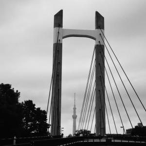 橋から覗くスカイツリー