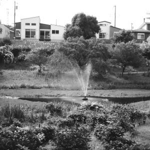 池のスプリンクラー