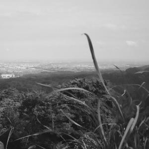 高尾山からの展望4