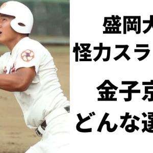 盛岡大付の怪力スラッガー金子京介特集!通算56本塁打の経歴とプロフィール