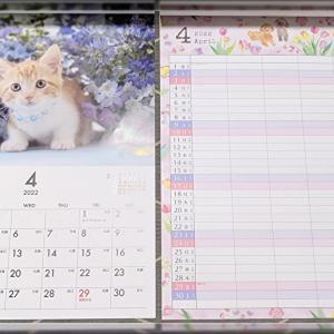 【DAISO】クオリティ高すぎ!2022年のオススメカレンダーはこれ!猫ちゃん・ファミリーカレンダー2選!