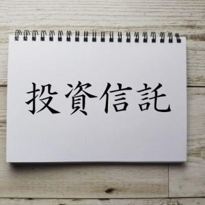 【投資信託 月次報告(2021年6月)】