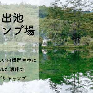 駒出池キャンプ場 日本一美しい白樺群生林に囲まれた湖畔でのんびりキャンプ【長野県】