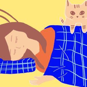 不眠肩こりにおすすめのムック本の整形外科医枕を娘用に購入して寝てみた感想