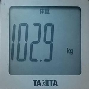 ダイエット7日め