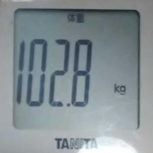 ダイエット10日め