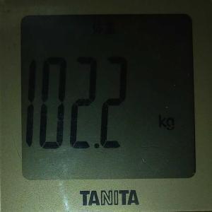 ダイエット12日め