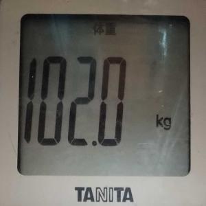 ダイエット14日め