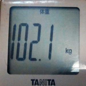 ダイエット15日め
