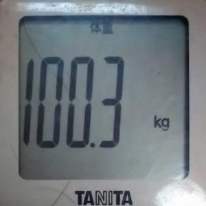 ダイエット22日め