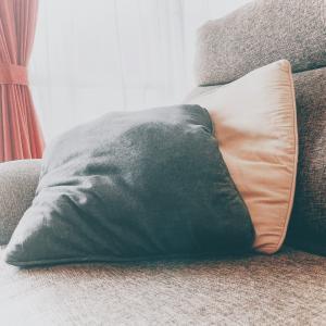 昼寝はウトウトしている時が一番心地いい