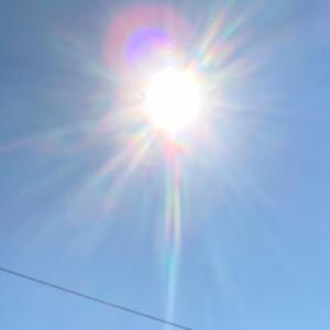 太陽がうつしだすものは