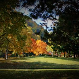 発寒公園の秋 パートⅠ
