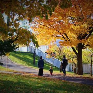 発寒公園の秋 パートⅢ
