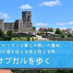 かつてのフランス軍との戦いの基地、五角形の塔を従える城を抱える町 サブガルを歩く