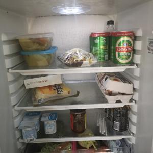 氷河を削ってみました♪冷蔵庫の霜取りをする