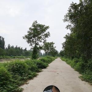 大雨の次の日のツーリング。鄭州東湖(郑州东湖)を目指してみましたが・・・・