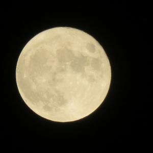 見上げる月は、日本で見ても、中国で見ても同じ月(*^^*)中秋节快乐~♪