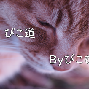 Kさまへ☆2021/07/31分の一日限定無料占い、鑑定結果のお届けです!