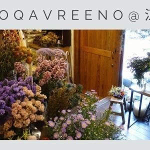 江古田/中野の花屋ネコカヴリーノのレポ【秘密基地みたいでワクワク】