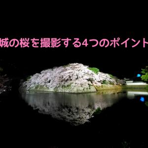 彦根城夜桜をきれいに撮影するための4つのポイント