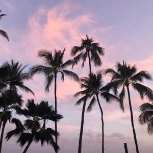 ハワイ旅行にJTBがおすすめの理由。初心者・リピータに人気 特典付きで個人旅行よりお得に