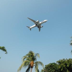 ハワイ旅行にJTBがおすすめの理由。初心者・リピータに人気 特典付きでもっとお得に