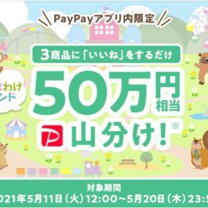 「【5月20日(木)まで!】PayPayフリマキャンペーンご紹介」~塵も積もれば山となるの巻~