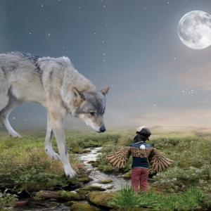 50代はサルからオオカミへ変わる時⁈