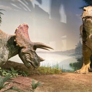 茨城県自然博物館|コロナ自粛の予約状況は?恐竜好き子供の反応も