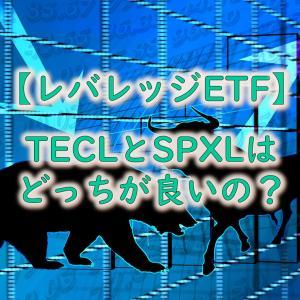 【徹底比較】TECL(ハイテクレバレッジETF)とSPXL(S&P500レバレッジETF)の違い