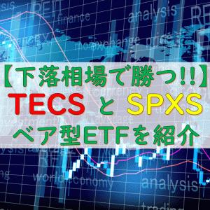 【下落相場で勝つ】ベア型ETFの『TECS』と『SPXS』について
