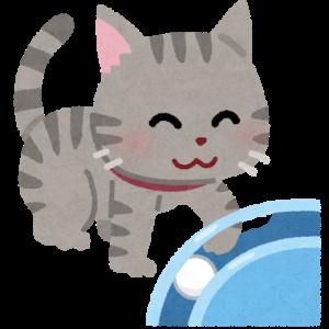 大きいサイズの猫の爪とぎ特集【国産】
