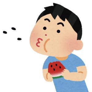 【食べるファスティング】すいか坊や【6日目】