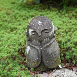 ポリフェノールさんの京都散歩 圓光寺とお地蔵様
