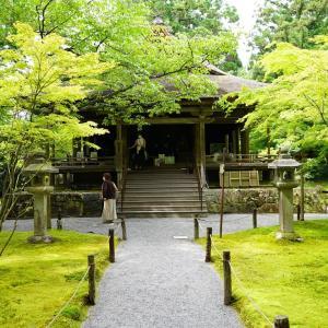 ポリフェノールさんの京都散歩 新緑の大原三千院