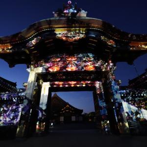 ポリフェノールさんの京都散歩 二条城×ネイキッド 二条城夏まつり2021