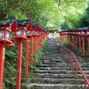 ポリフェノールさんの京都散歩 深緑の貴船神社を訪ねて