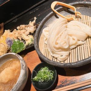 コダマちゃん「山元麺蔵」さんに行く